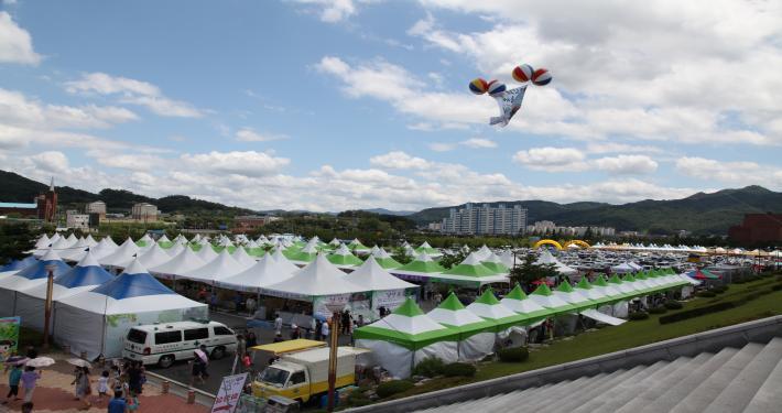 제7회 김천자두.포도축제장전경